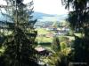 Baumwipfelweg im Bayerischen Wald