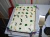 Katharinas Graduation Cake 2