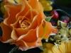 anita-75-geburtstag_2012-03-04_0156