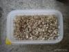rindfleisch-schmortopf_2012-04-07_0007