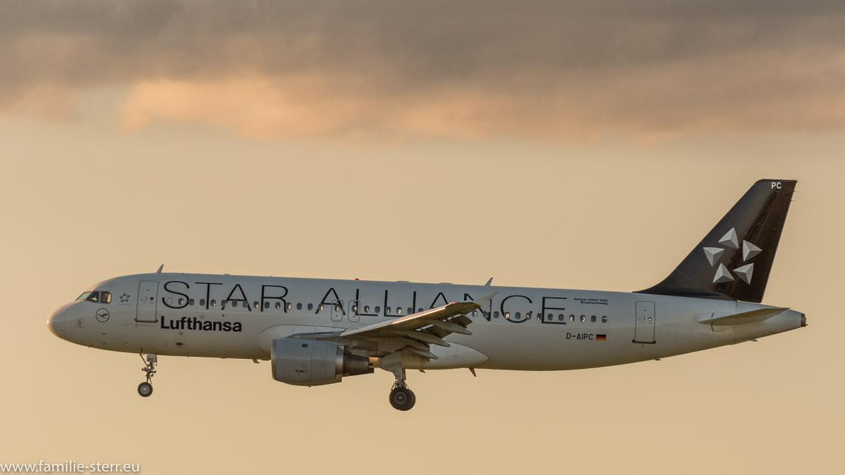 "Lufthansa Airbus A320 ""Star Alliance"""