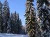 winklmoosalm_2012-02-12_0044