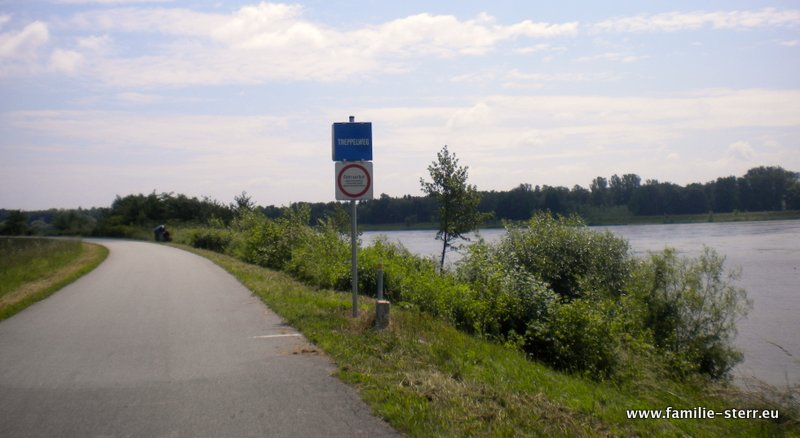 Donauradweg bei Naarn