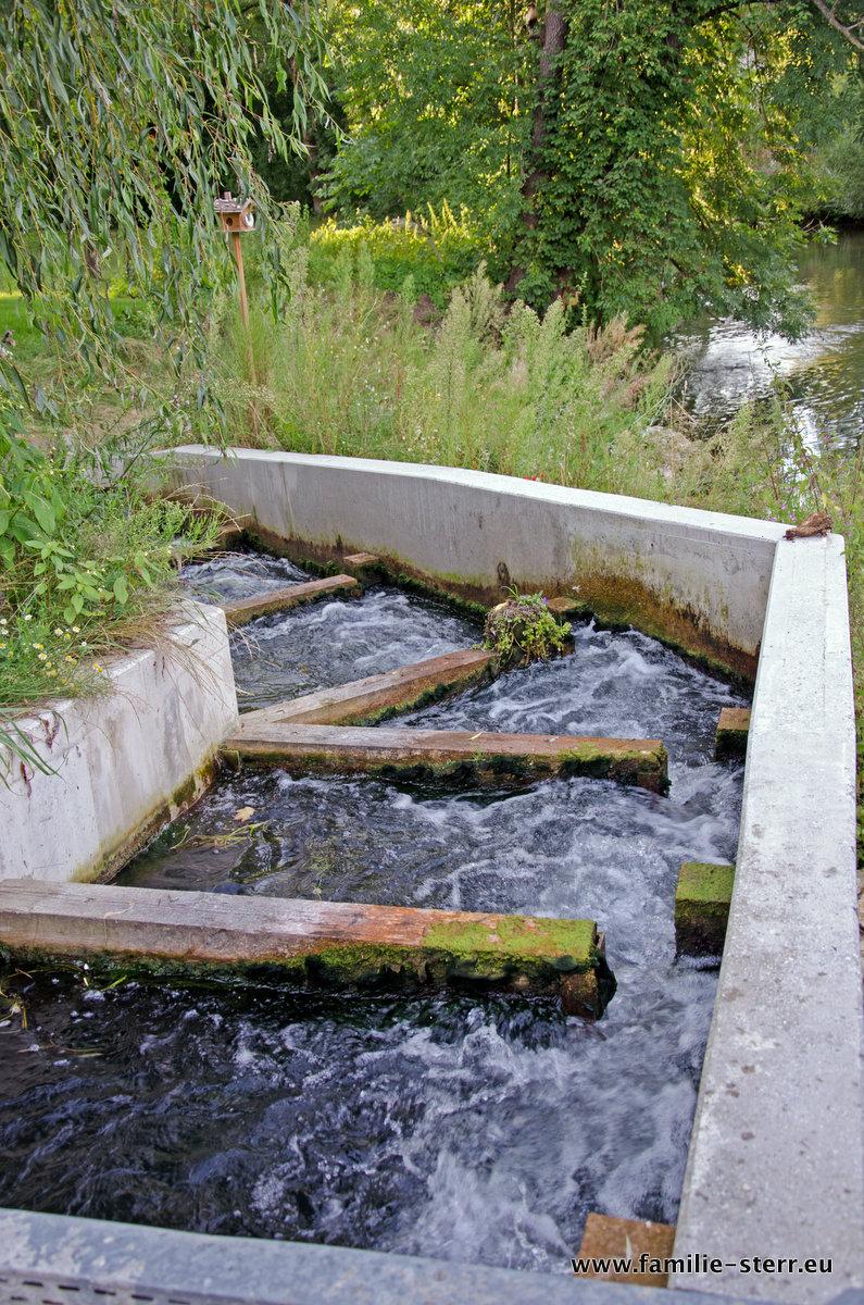 Fischtreppe Lukasmühle, Blende 4,0, 1/60 Sekunde