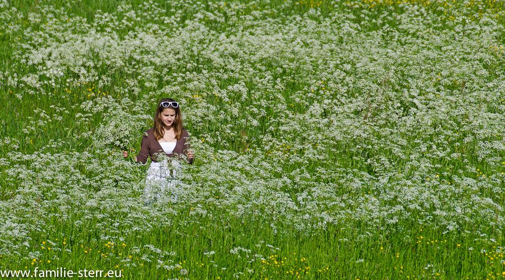 Isabella in einer blühenden Wiese