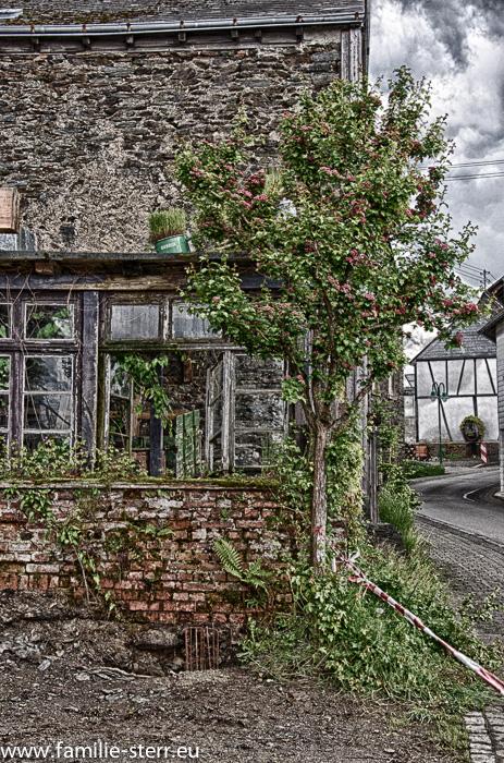 altes Haus / Ruine in Starkenburg an der Mosel