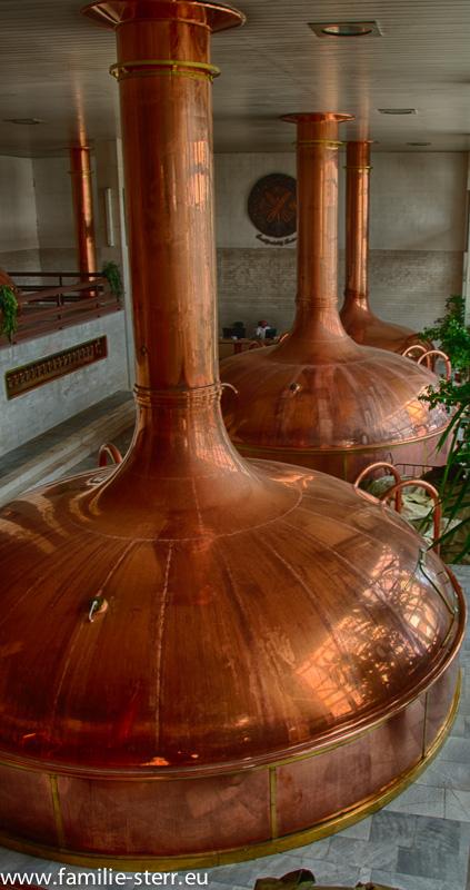 Budweis Brauerei-4