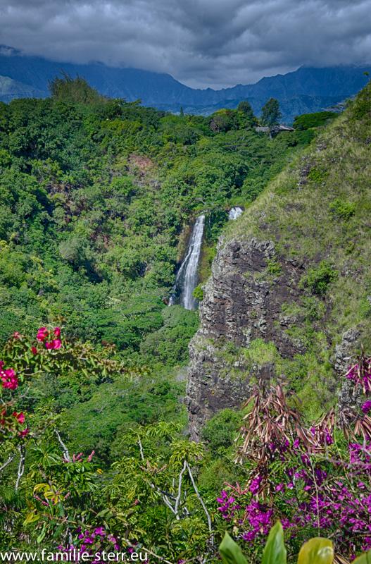 Opaekaa Falls / Kauai