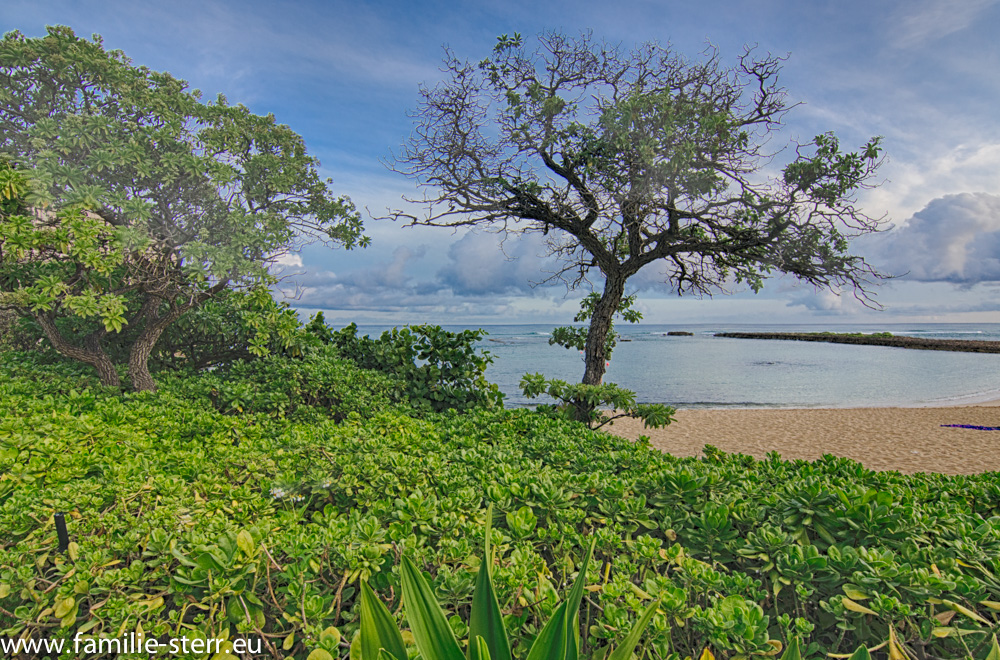 Hotelstrand in Oahu