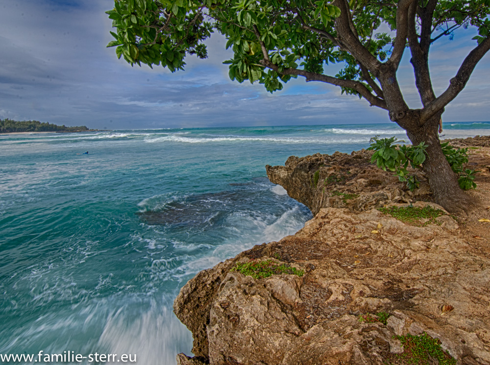 Turtle Bay / North Shore / Oahu