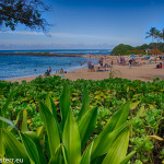 Badestrand an der North Shore / Oahu