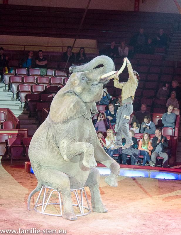 Circus Krone - Erwin Frankello
