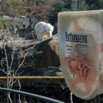 Rettungsring am Eisbärengehege im Zoo in Berlin