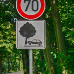 "Verkehrsschild ""Vorsicht Baum"""