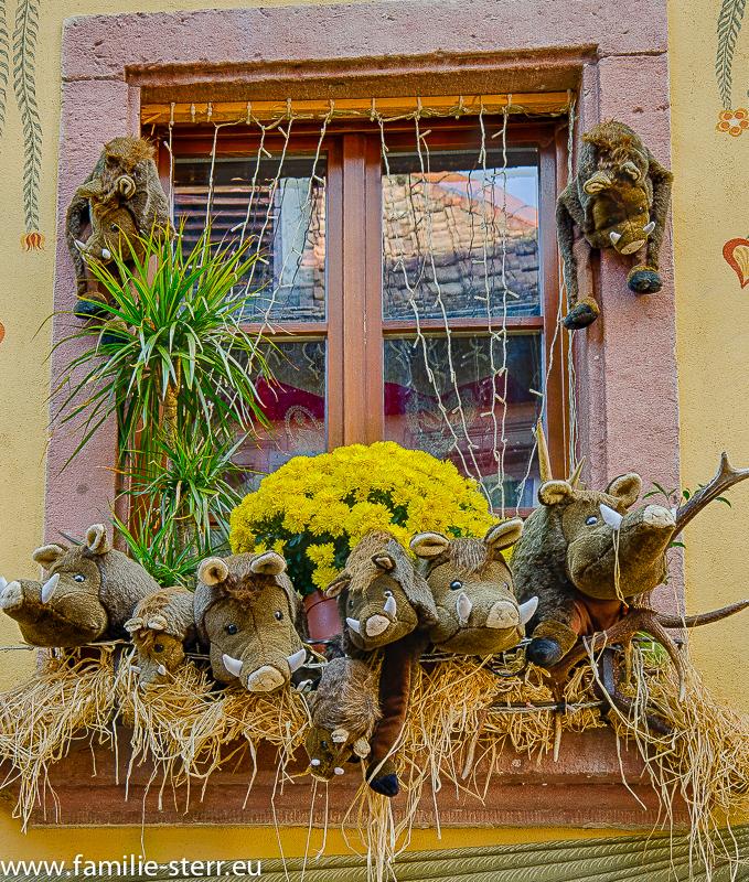 Für Halloween dekoriertes Fenster In Ribeauville