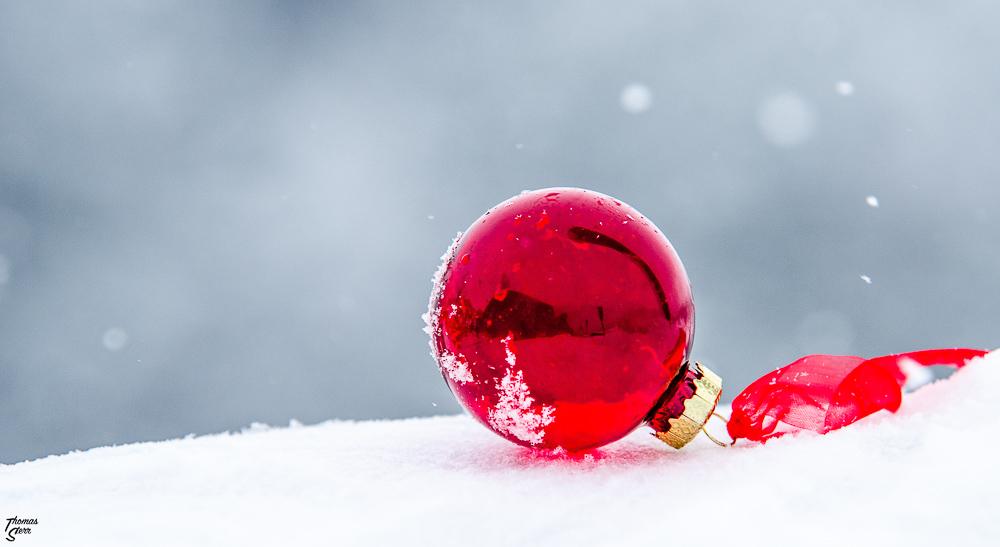 rote Christbaumkugel im Schnee / Sonnen - Alm auf der Kampenwand