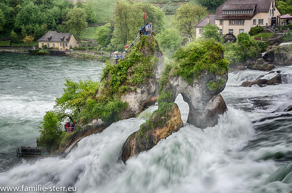 Felsen im Rheinfall