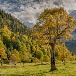 Herbst im Großen Ahornboden / Karwendel