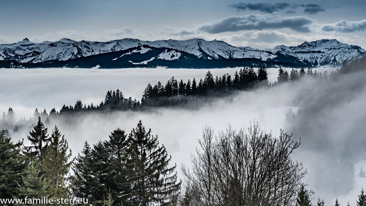 Nebelschwaden auf dem Pfänder Bei Bregenz