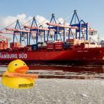 Renate in der vereisten Elbe im Hamburger Hafen