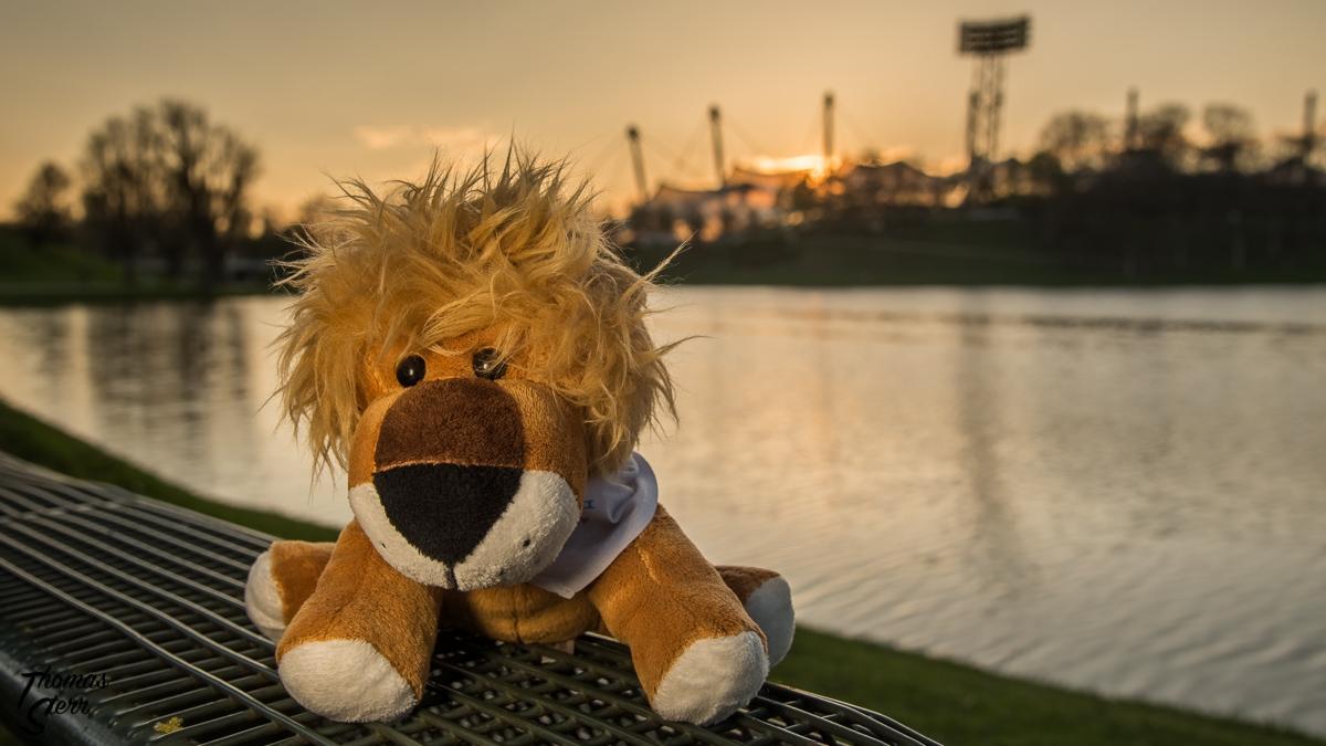 Leopold / Sonnenuntergang am Olympiasee