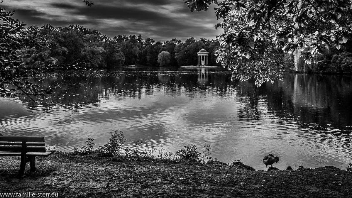 der Monopteros vor der Badenburg im Park von Schloss Nymphenburg in schwarz/weiss
