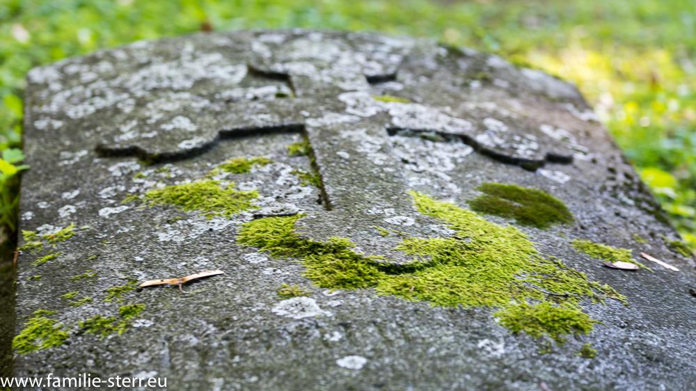 moosbedeckte Grabplatte am Alten Nordfriedhof in München