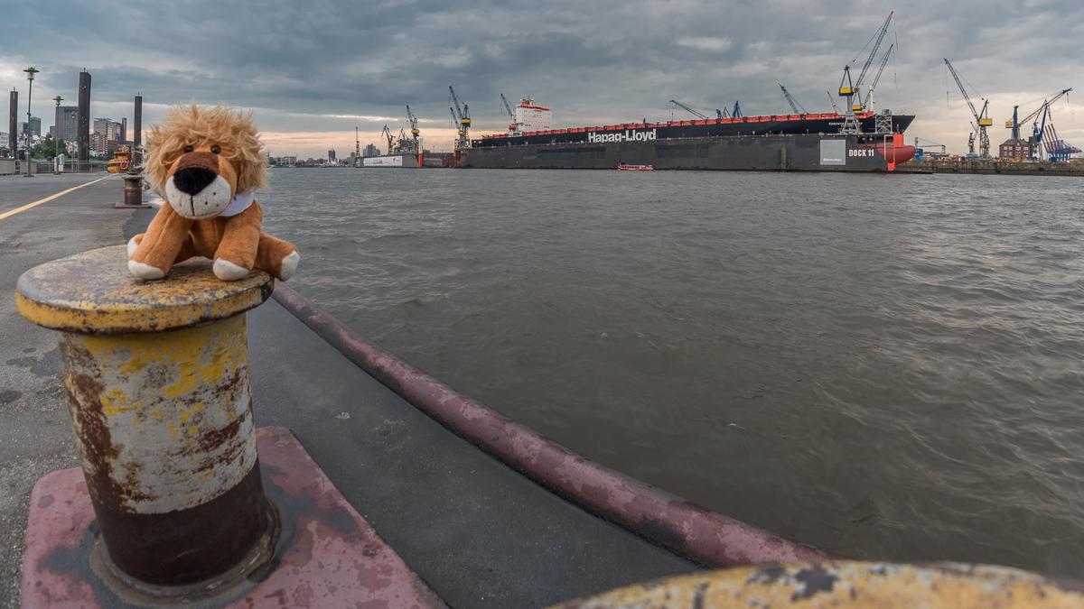 """Leopold am Anleger """"Dockland"""", im Hintergrund Hamburg und das Blohm & Voss Trockendock"""