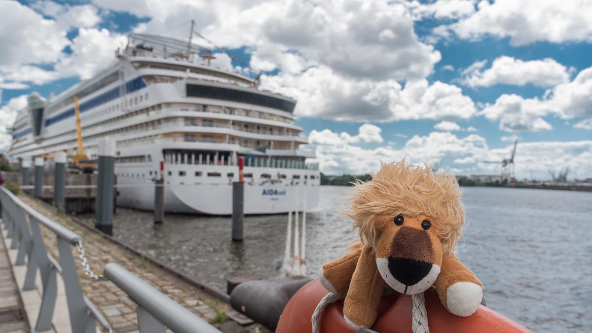 Leopold im Hamburger Hafen am Kreuzfahrtterminal vor der AidaSol