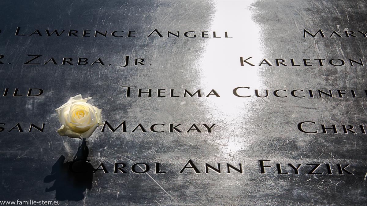 Weiße Rose am 09/11 Memorial