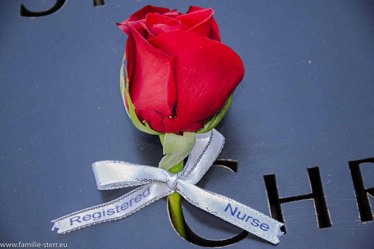 rote Rose für ein Opfer der Anschläge vom 9. Sept. am 9/11 Memorial
