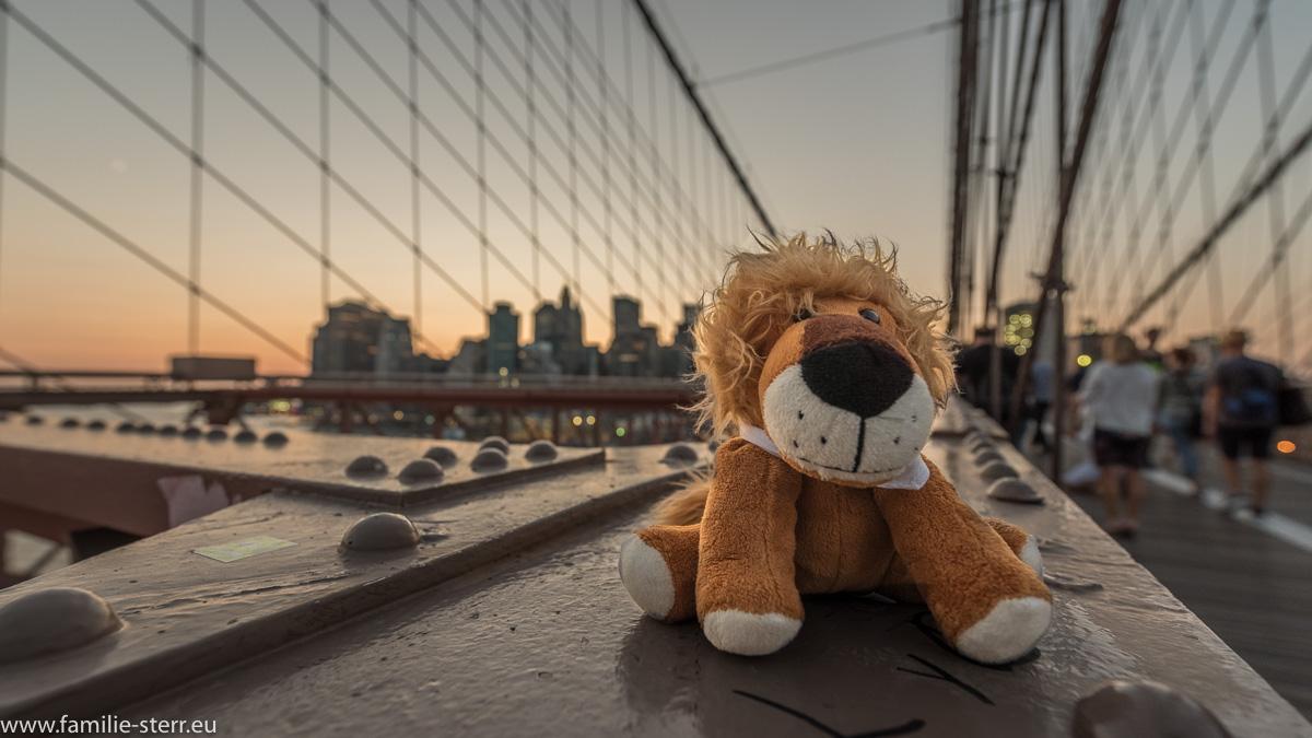 Leopold auf der Brooklyn Bridge vor der Skyline von Manhattan