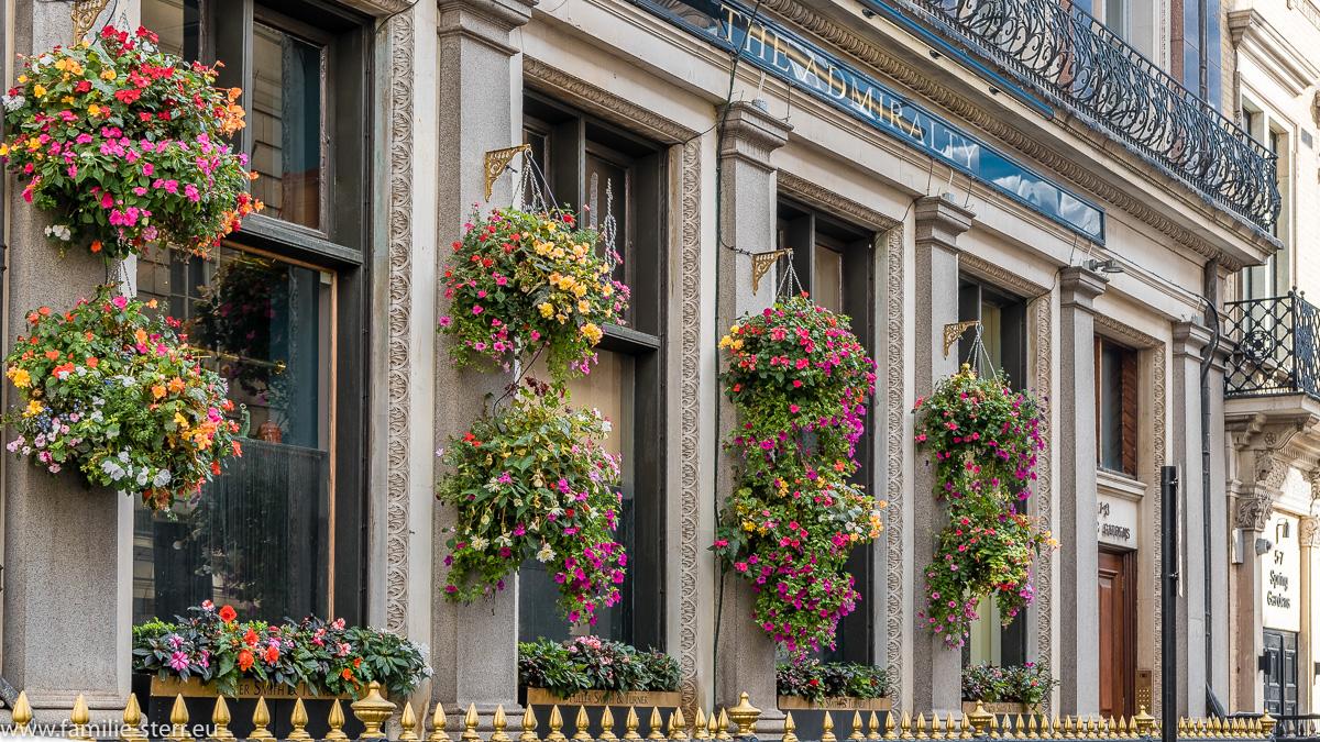 Blumenschmuck an einem Pub am Admirality Arch in London