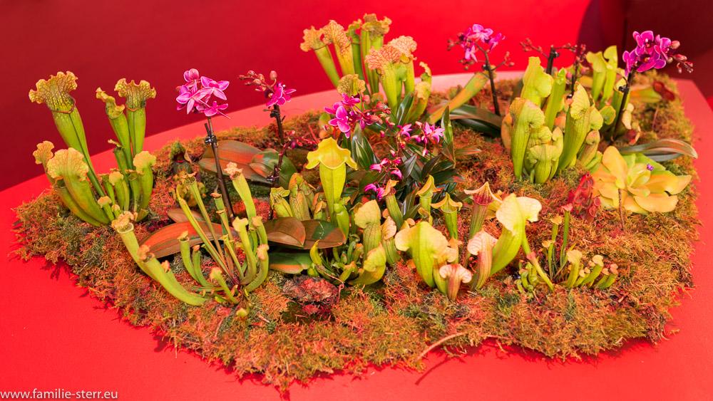 Blumendekoration auf der Inhorgenta in München