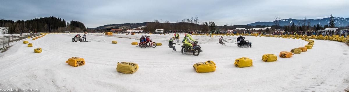 Eisbahn des MSC Steingaden / Skikjöring 2017