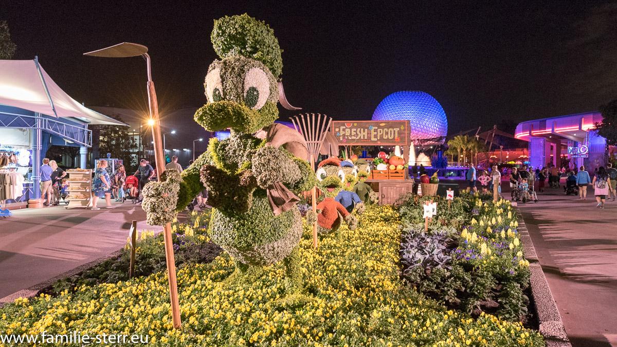 Donald Duck, Tick Trick und Track  im Blumenbeet beim EPCOT Flower Festival mit Spaceship Earth im Hintergrund