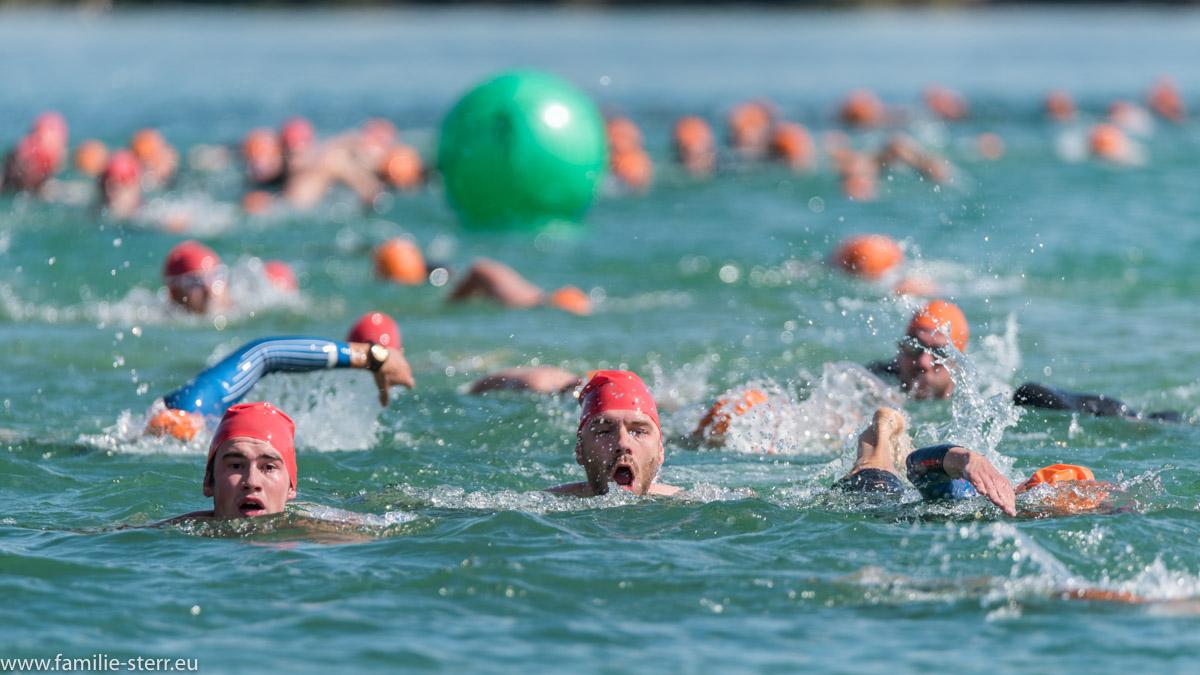 Schwimmer auf der Schwimmrunde am Kronthaler Weiher / 24. Erdinger Stadttriathlon
