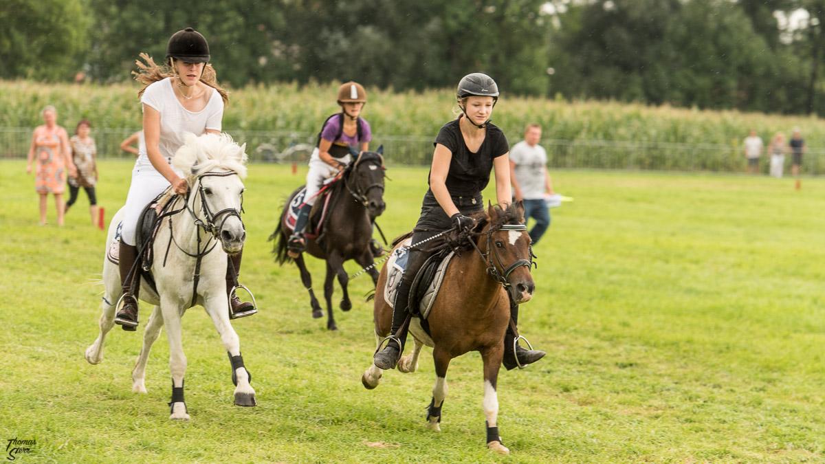 Ponyrennen beim Pferderennen beim Herbstfest Erding