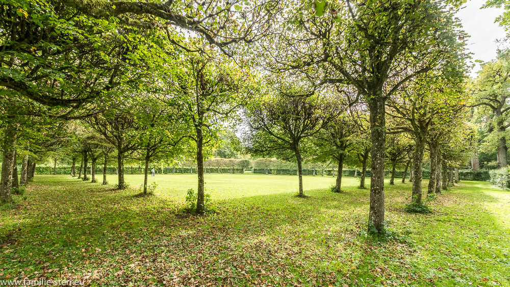 von einer kleinen Allee gesäumter Garten im nördlichen Teil des barocken Schlossgartens in Schleißheim