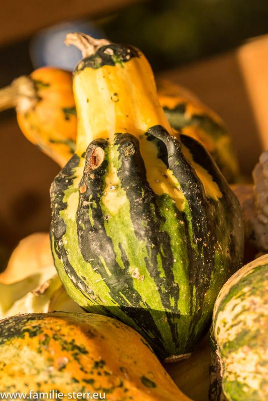 Kürbisse an einem Verkaufsstand für Halloween