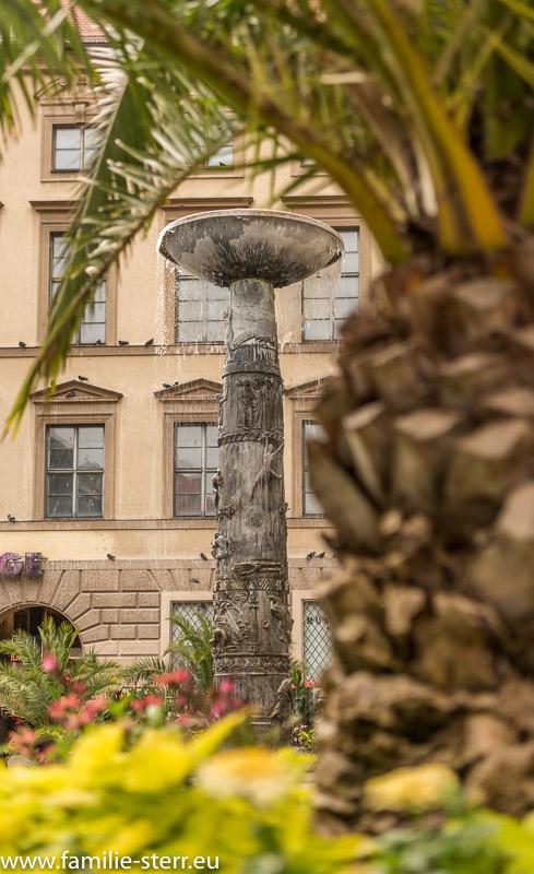 Palme als Blumendekoration vor dem Richard-Strauss-Brunnen vor der Alten Akademie in München