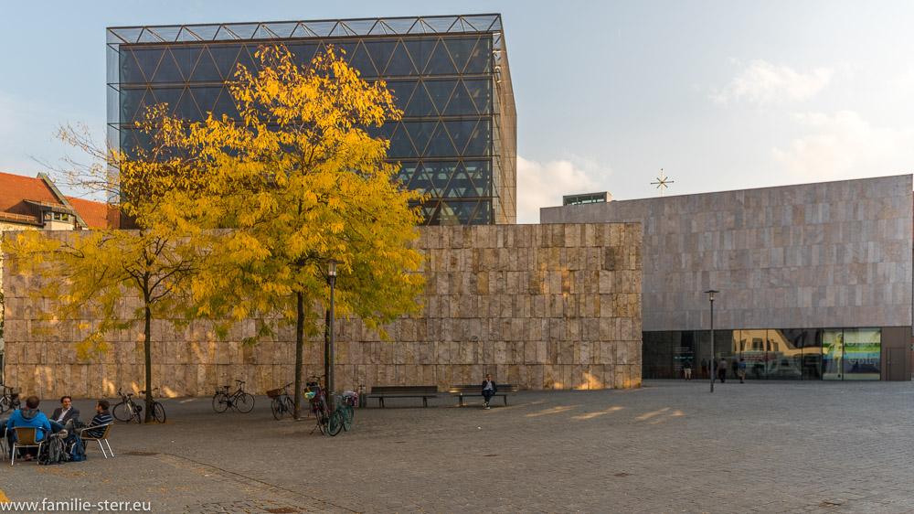 herbstlich gefärbter Baum vor der Ohel - Jakob - Synagoge in München