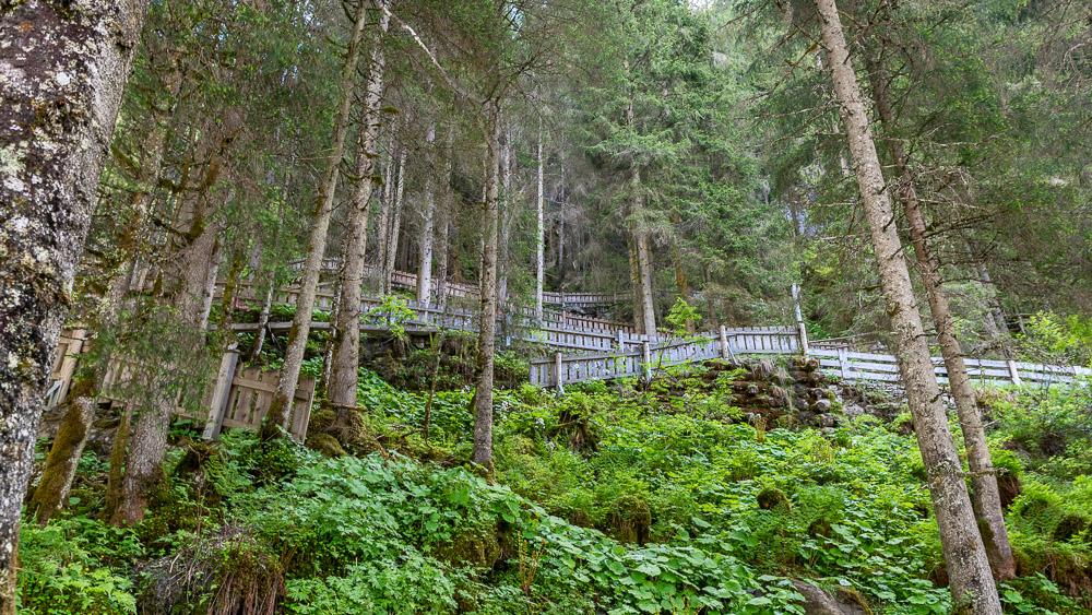 Weg zur Riemann - Kanzel und durch den Wald zum mittleren Fall der Krimmler Wasserfälle