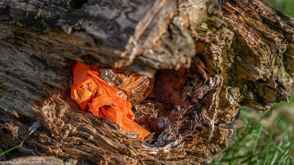 Tüte mit einem Hundehäufchen, versteckt in einem Baumstumpf im Landschaftsschutzgebiet Mallersdorfer Holz mit Heiden