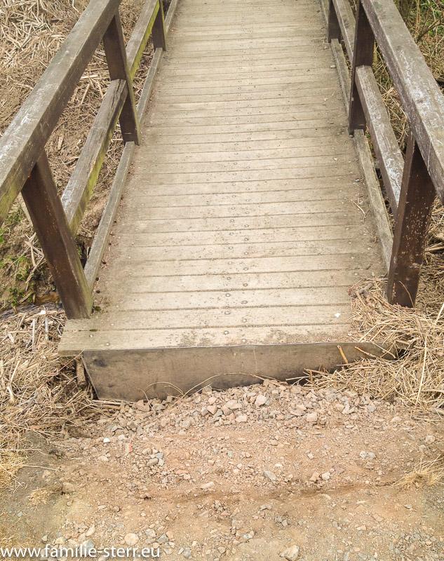 zu lange Brücke an einem Radweg an der Mulde