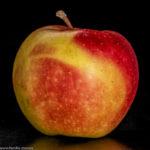 gelb-roter Apfel der Sorte Kenzi
