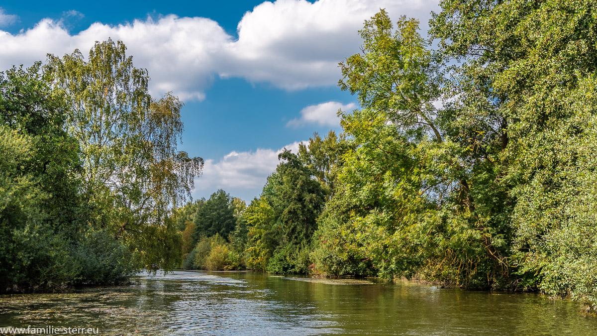 natürlicher Flusslauf der Vils durch das Gartenschaugelände