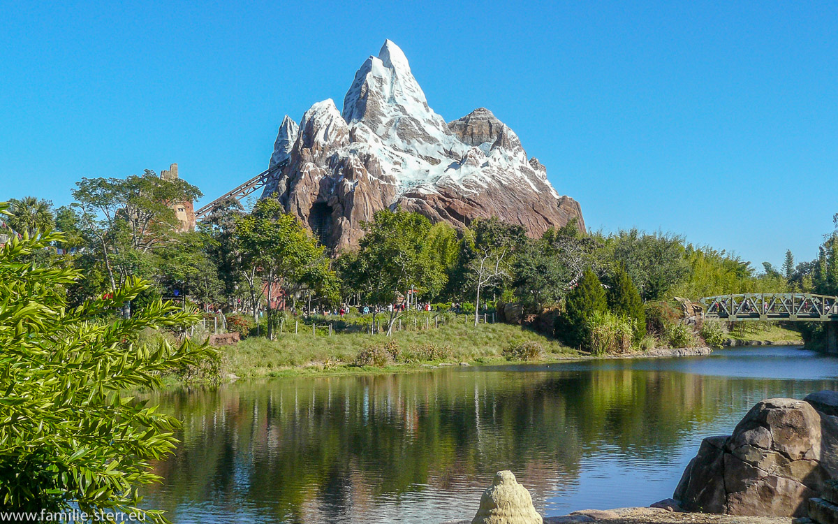 Expedition Everest 2010