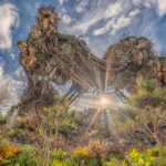 strahlende Sonne unter Pandora - World of Avatar im Animal Kingdom / Disney World / Florida