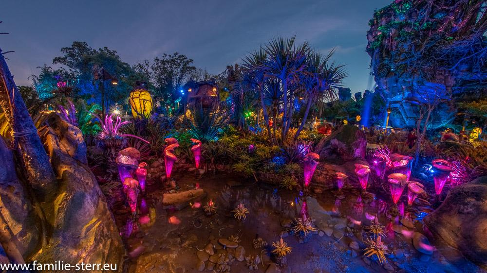 nächtliche World of Avatar